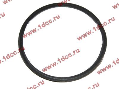 Кольцо уплотнительное выпускного коллектора H2 HOWO (ХОВО) VG260110162 фото 1 Мурманск