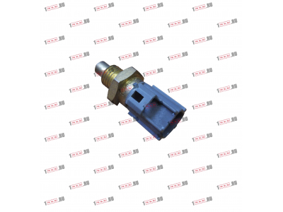 Датчик температуры охлаждающей жидкости (двухконтактный) H3 HOWO (ХОВО) R61540090005 фото 1 Мурманск