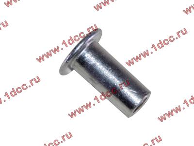 Заклепка алюминиевая 10х24 H2/H3 HOWO (ХОВО) 189000340068 AL фото 1 Мурманск