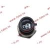 Датчик давления масла H3 HOWO (ХОВО) VG1540090035/1 фото 2 Мурманск