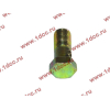 Болт пустотелый М10х1,0 (штуцер топливный) H HOWO (ХОВО) 81500070054 фото 3 Мурманск